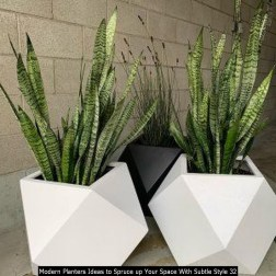Modern Planters Ideas To Spruce Up Your Space With Subtle Style 32