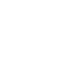 artist series 240