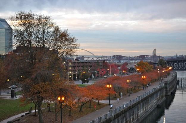Fall Portland Skyline