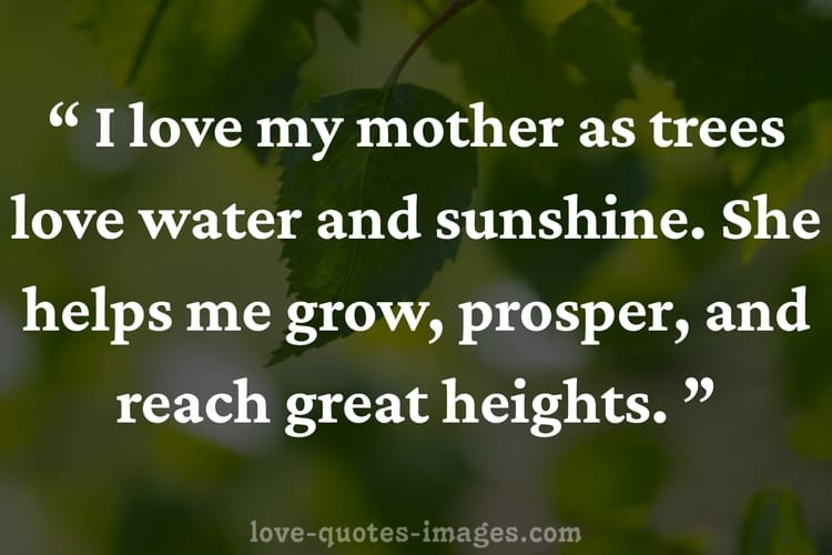 mothers quotes for sons