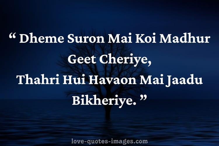 urdu shayari in english of love