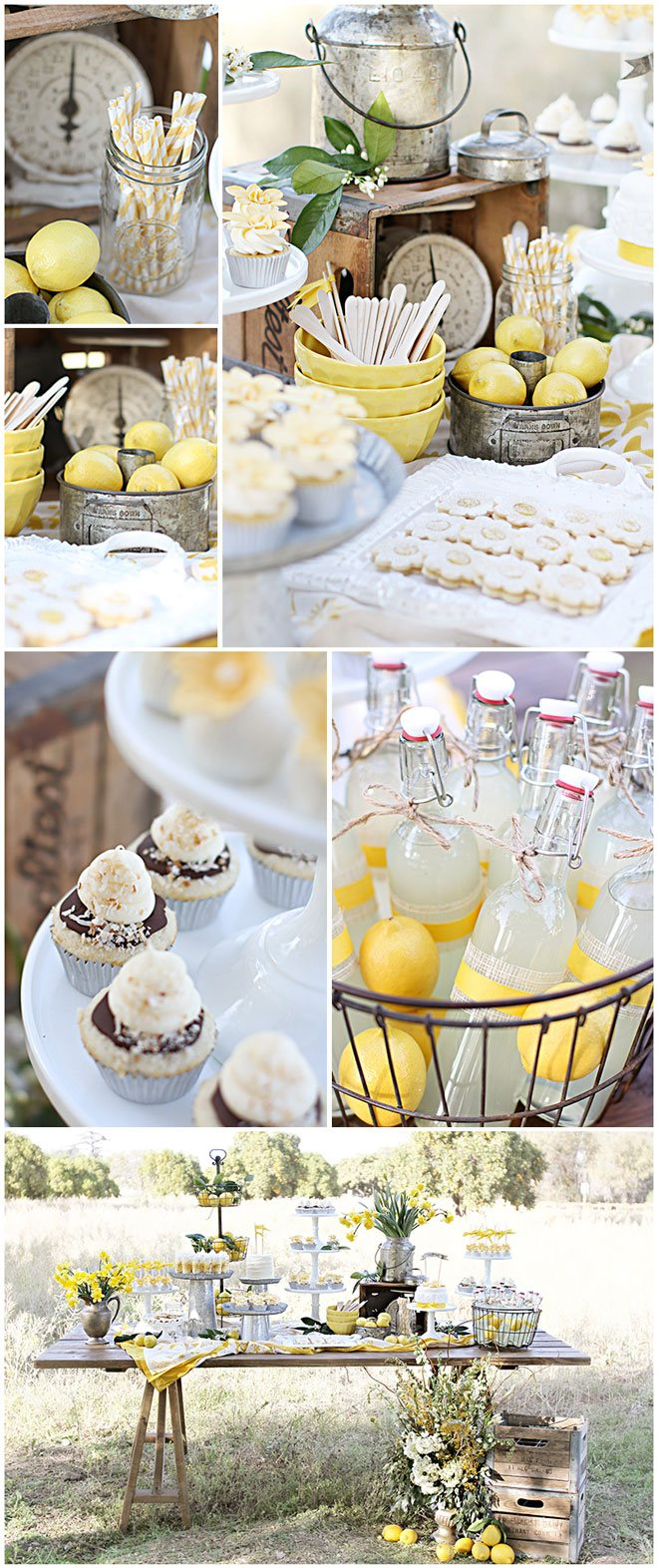 Lemon Dessert Table Feature on Love The Day