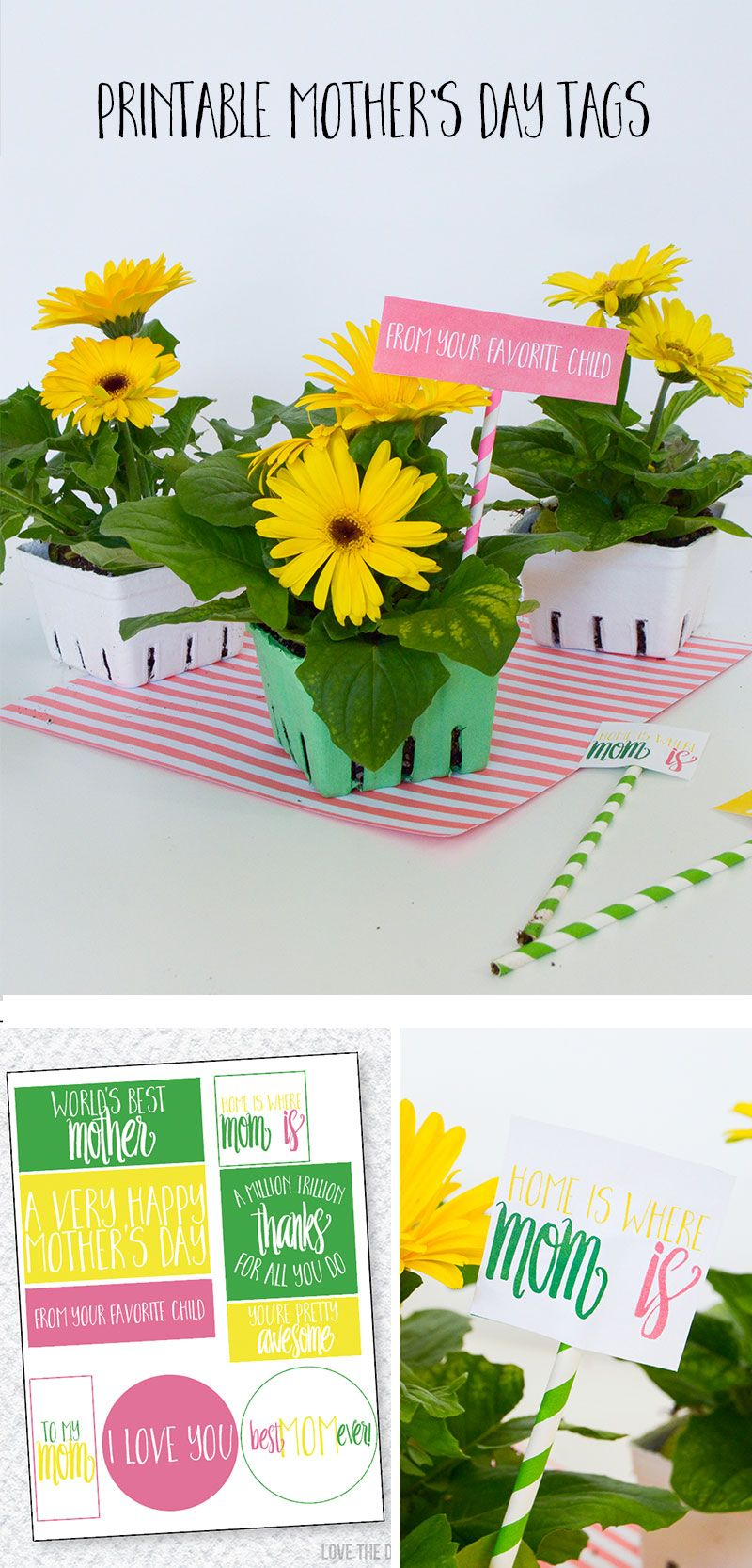 Mother's Day Gift Idea & FREE Printable Gift Tags by Lindi Haws of Love The Day