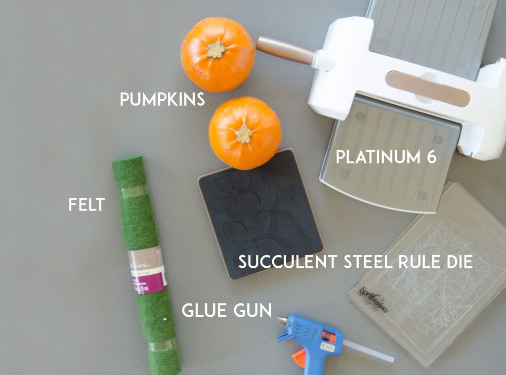 DIY Succulent Pumpkins by Lindi Haws of Love The Day