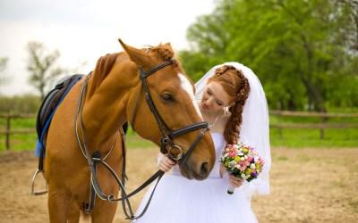 Outdoor Wedding of Your Dreams