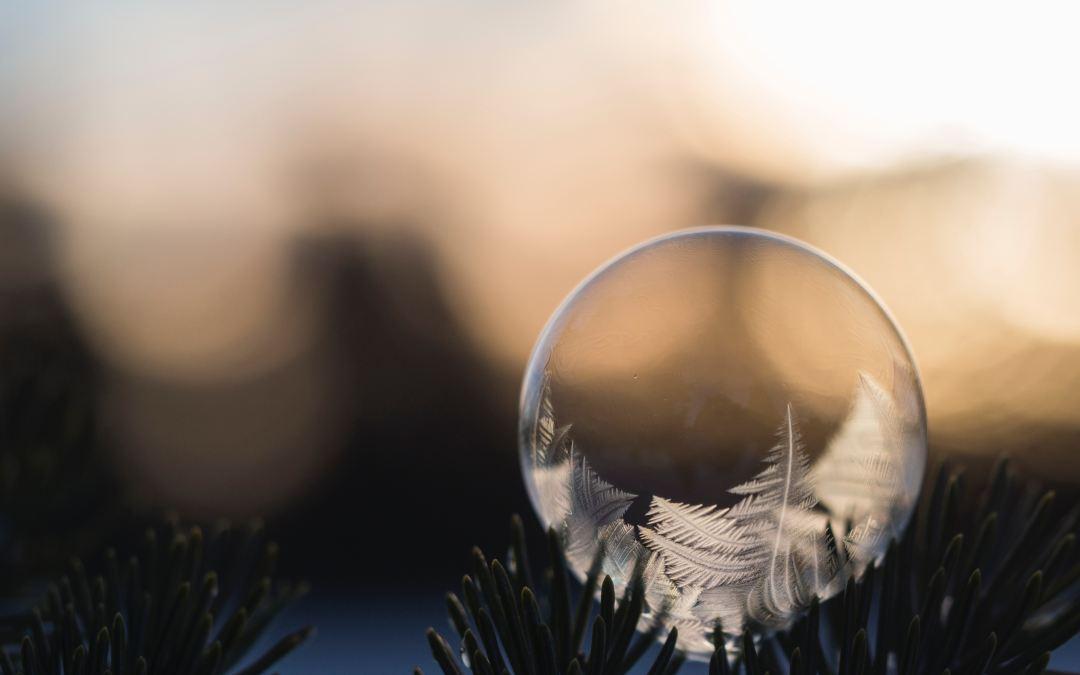 Reaching Outside My Bubble