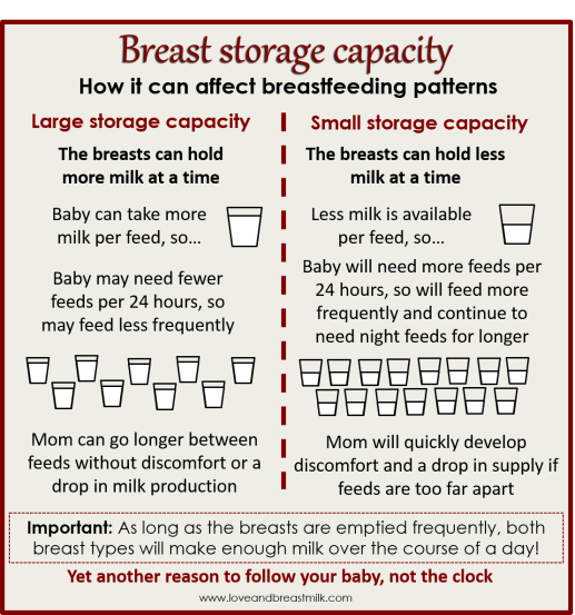 Breast storage capacity infographic