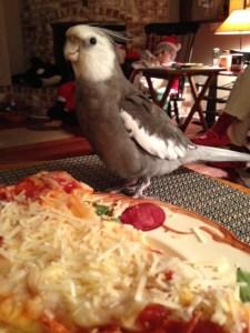 Oh! Fresh pizza!