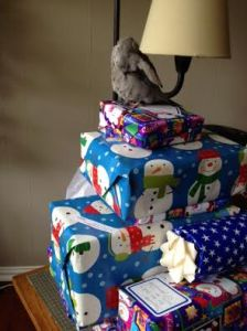 Preening on the gifts you have selected helps other guests know they are spoken for.