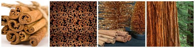 cinnamon-collage
