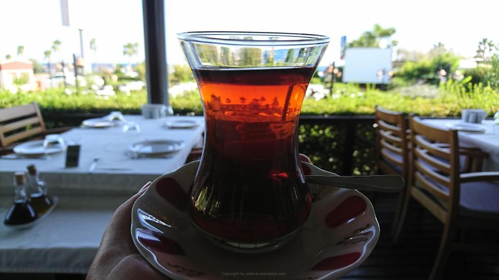 Smagen af Tyrkiet