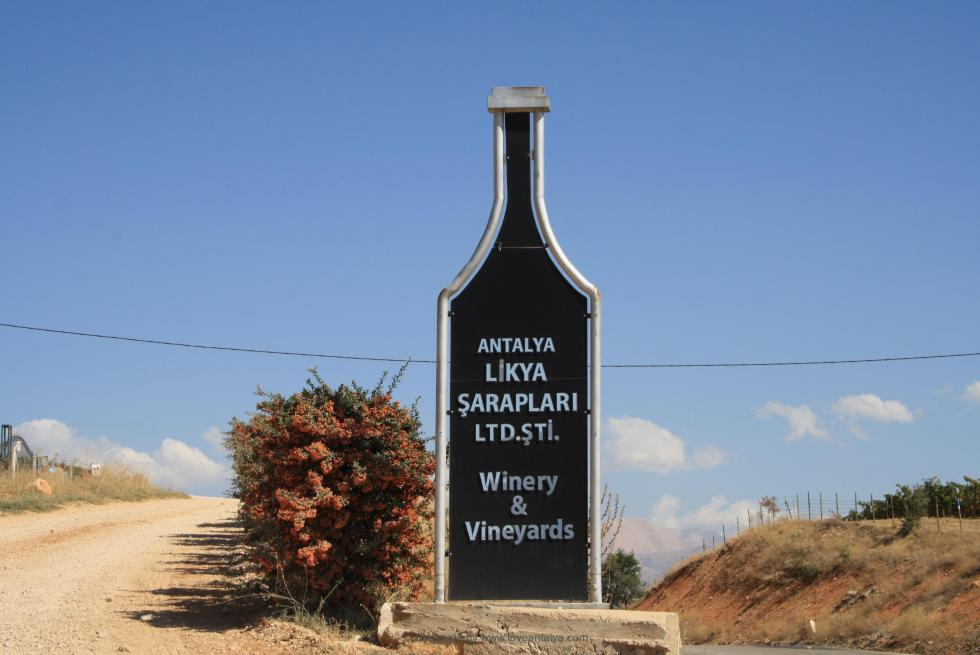 Likya wine