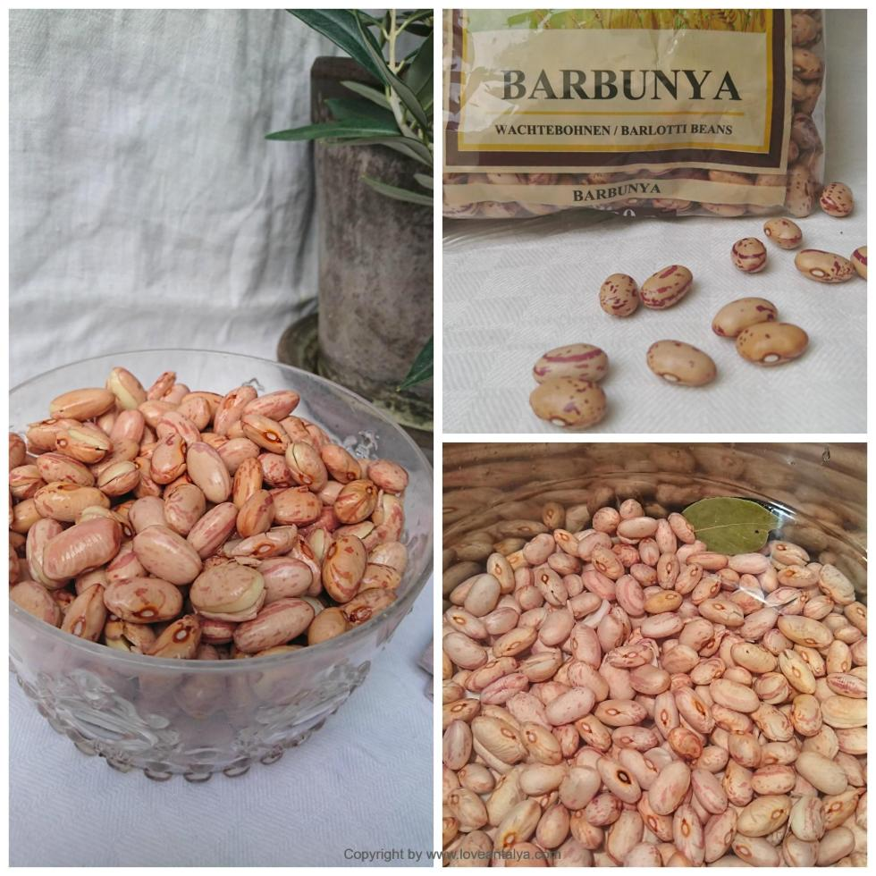 This image has an empty alt attribute; its file name is Barbunya-beans-collage-2.jpg