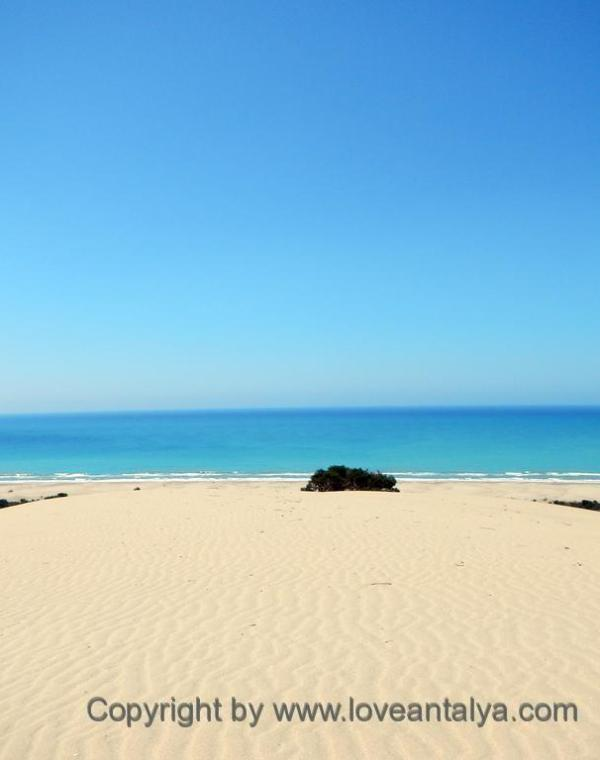 exceptional beaches