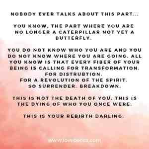 rebirth quote
