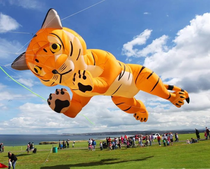 Downhill Kite Festival