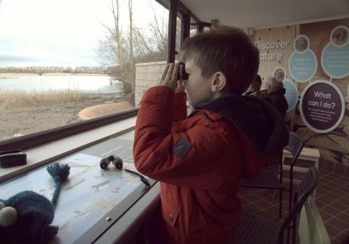 Kid birdwatching