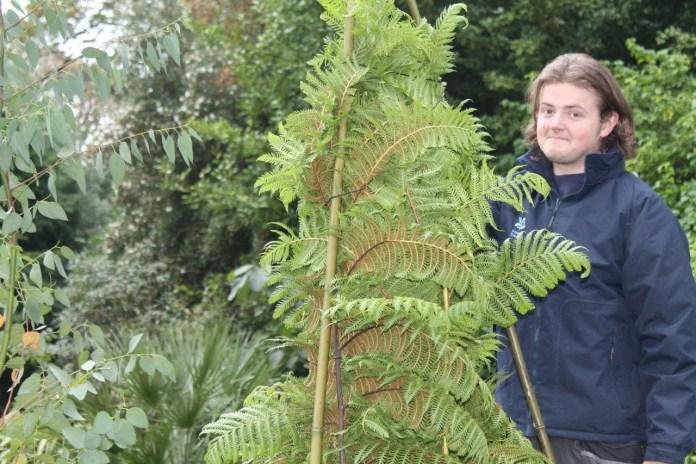 Ben Bridges Mount Stewart Garden Apprentice Scheme