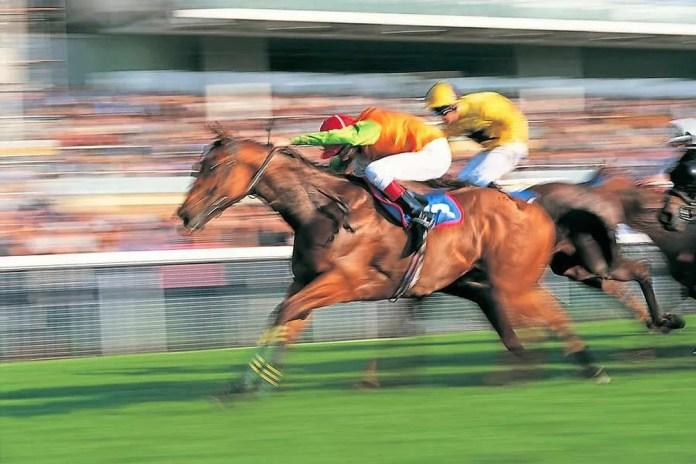 Horse racing Millionaires