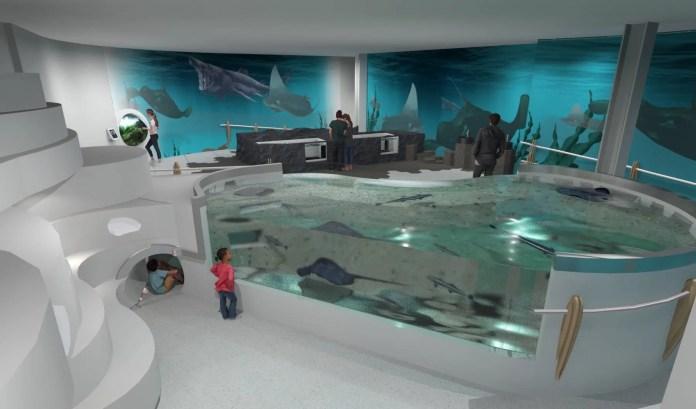 Belfast Aquarium