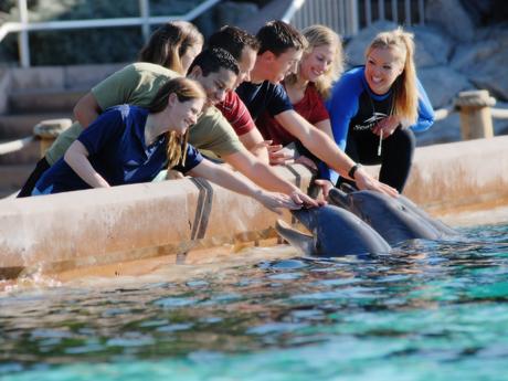 SeaWorld® San Diego's Animal Spotlight Tour
