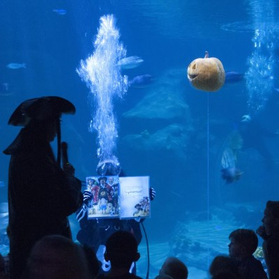 """Giveaway for two tickets to Visit """"The Haunted Aquarium"""" at The Living Planet Aquarium"""