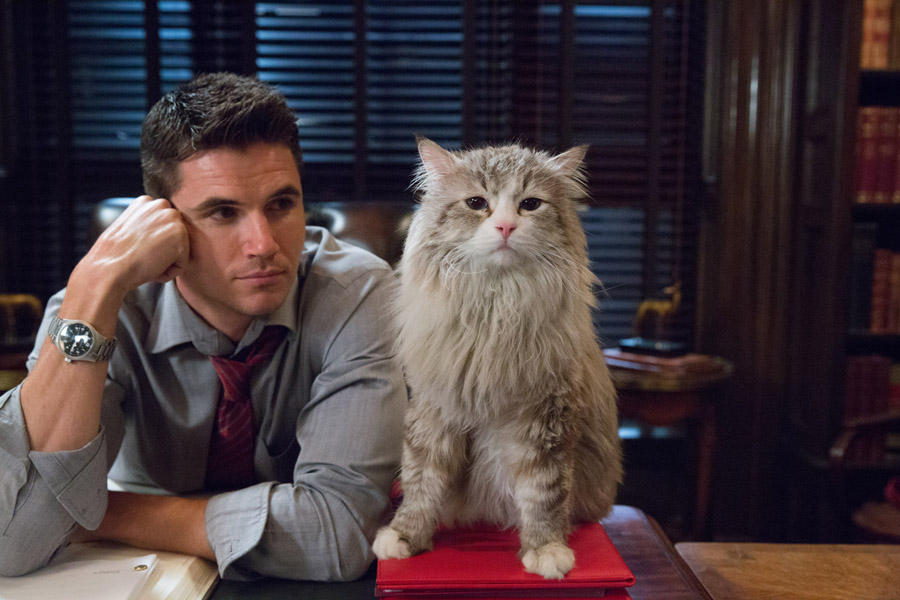 "M118 Robbie Amell and Mr. Fuzzypants tar in EuropaCorp's   ""NINE LIVESÓ. Photo Credit: Takashi Seida © 2016 EuropaCorp"