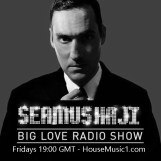Seamus Haji Housemusic1