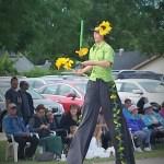 Фестиваль подсолнухов в Алтоне