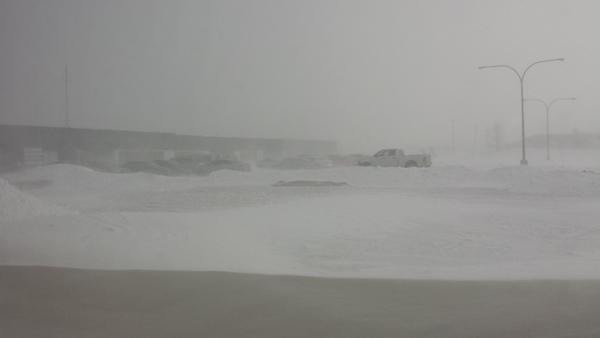 Winter in Morden 2015 (4)