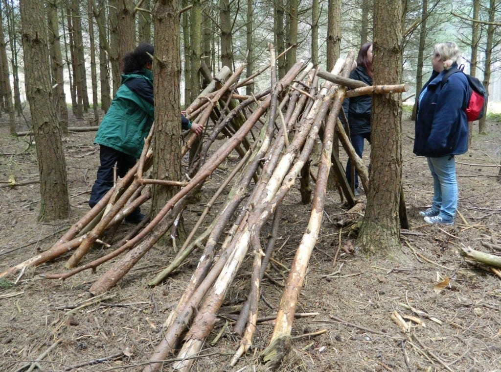 Sherwood Pines Forest park activities