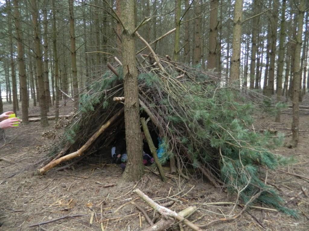 den building activities at sherwood pines