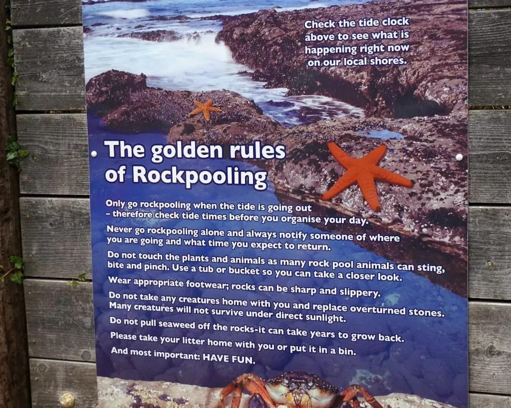 Rockpooling tips
