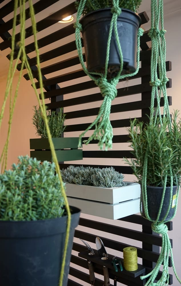 Black garden trellis and macrame plant hangers