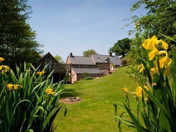 Pretty country cottage gardens with daffodils