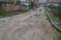goznica13111311