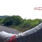 サイクリング中に蜂 刺された瞬間が映っていた!!