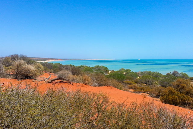 The incredible colours of Shark Bay