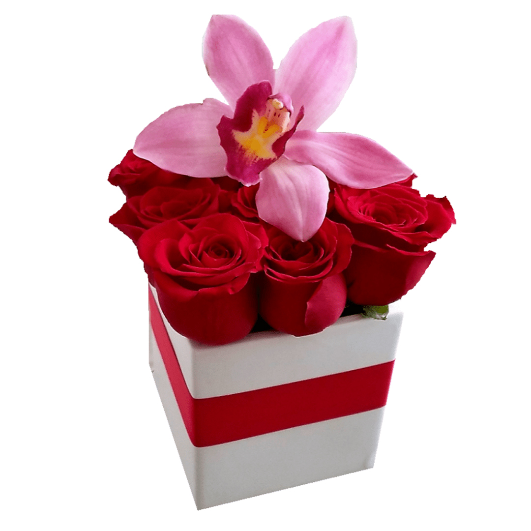 Red Roses Box With An Orchid Birthday Flowers