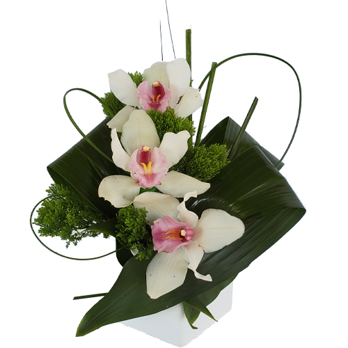 Coral Gables Flower Delivery