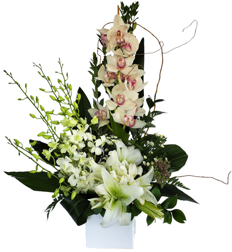 White Dreams Luxury Love Flowers