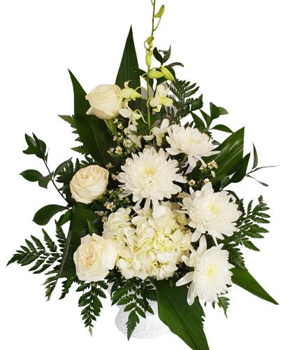 White-Funeral-Pequeno