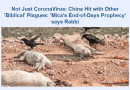 Not Just CoronaVirus: China Hit with Other 'Biblical' Plagues: 'Mica's End-of-Days Prophecy' says Rabbi – Breaking Israel News