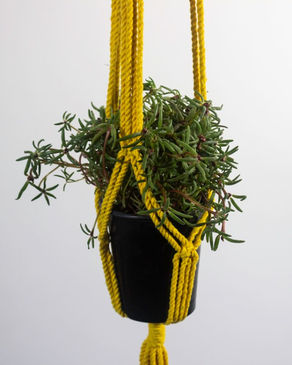 Santana Macrame Plant Holder Yellow Made in Nicaragua