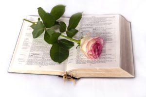 bible-999132_960_720