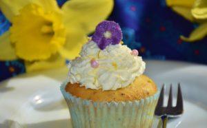 cupcake-1283332_960_720