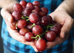 grapes-1442943_960_720