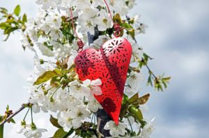 heart-1349974_960_720