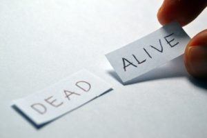 alive-1123023_960_720