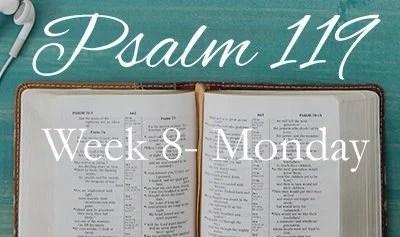Week 8 – Fight Falsehood With Praise